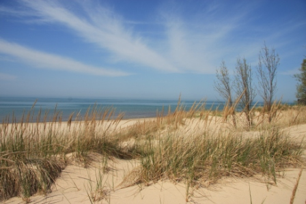 Spring Comes To Dunes >> Doherty Images Indiana Dunes Four
